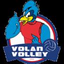 Volano Volley